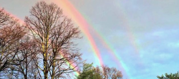 rainbow-grab